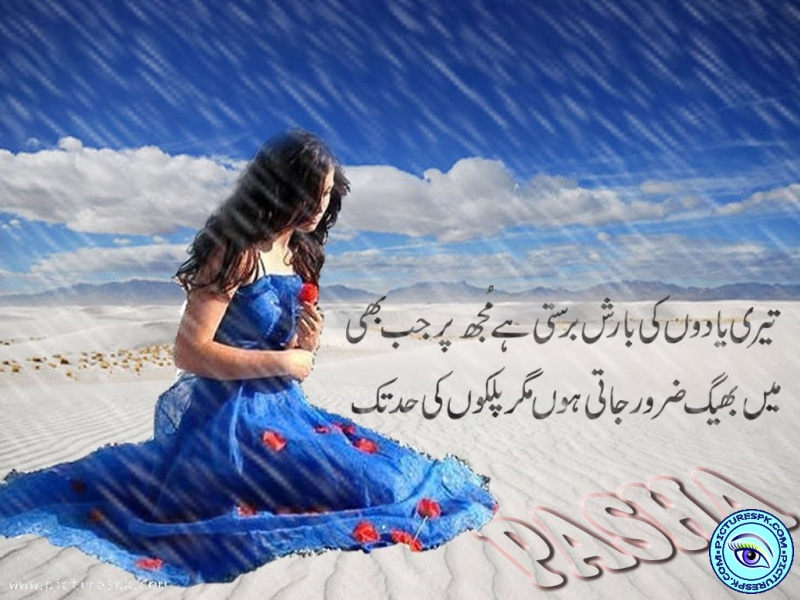 Picture shayari muqaddar sweet poetry wallpaper 800x600 altavistaventures Image collections
